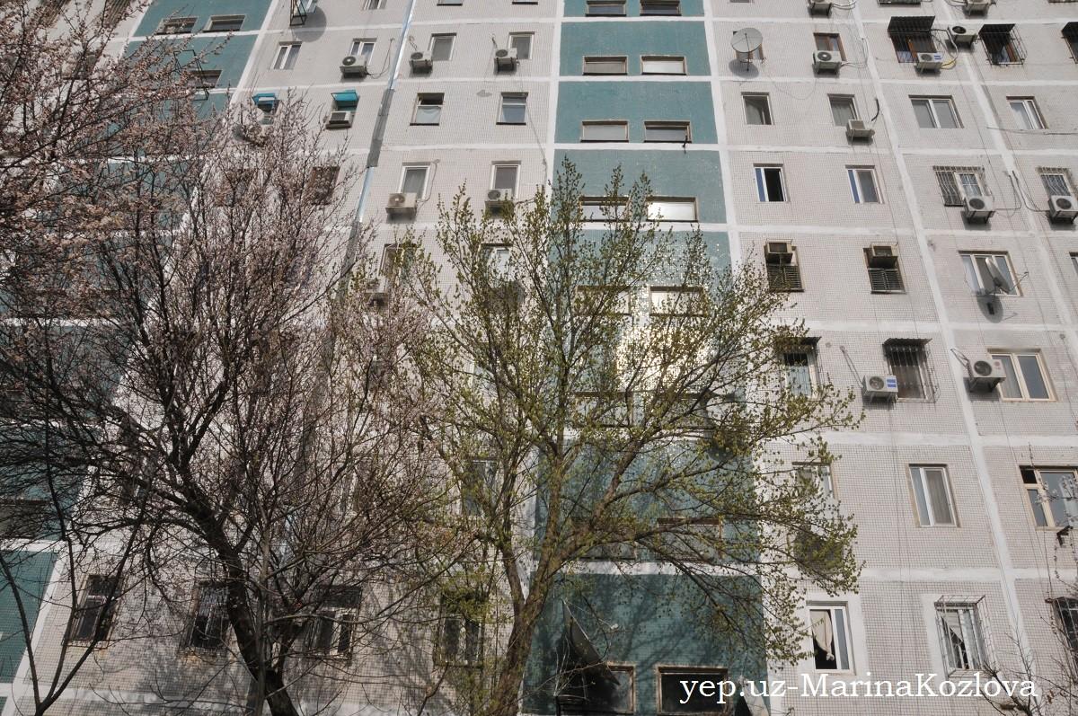 Многоэтажный дом в Ташкенте ранней весной 2018 - первые листочки на деревьях, цветущий урюк, многочисленные кондиционеры