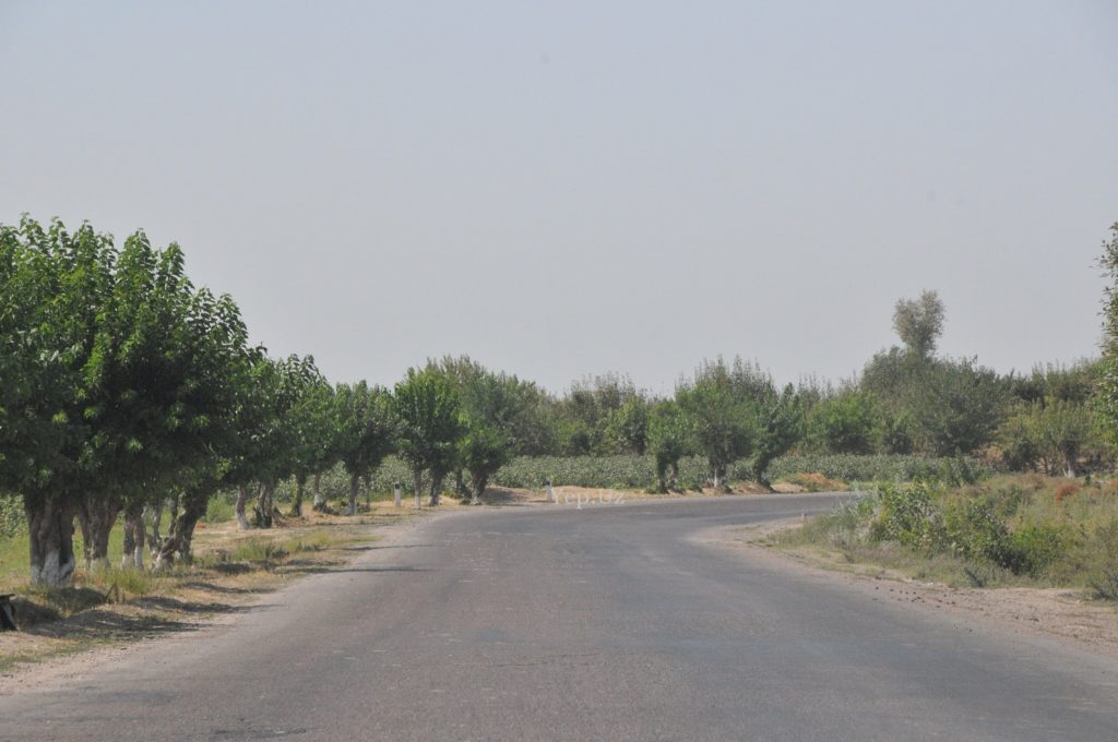 Дорога на Ташморе